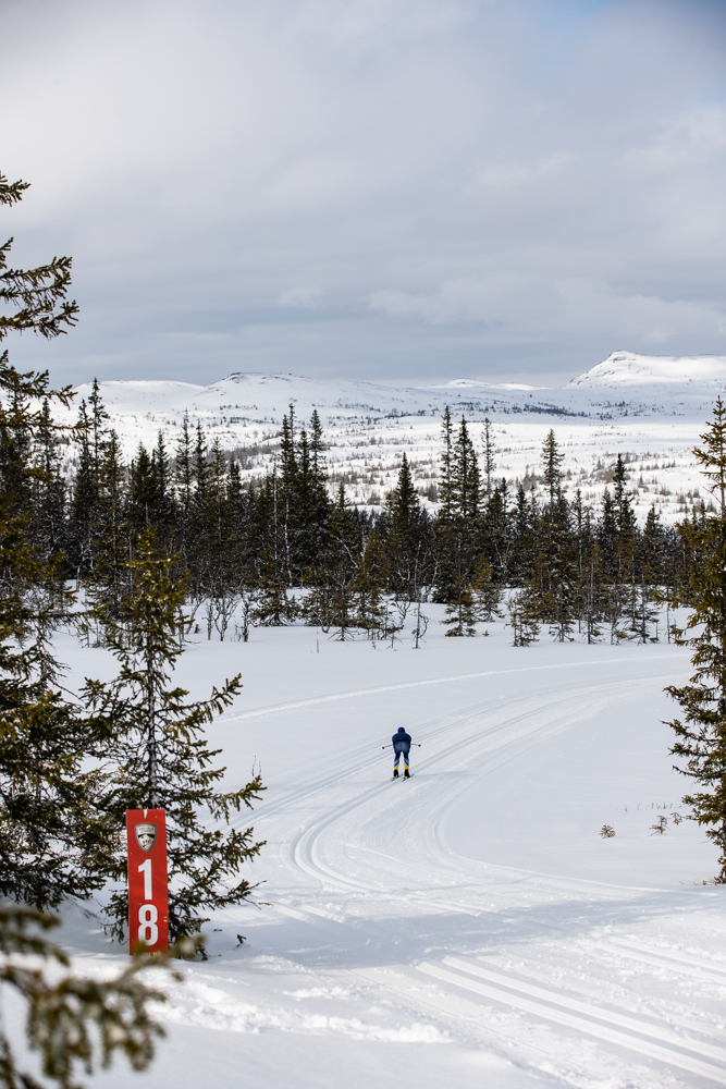 Årefjällsloppet bjuder på fina vyer. FOTO: Anette Andersson.