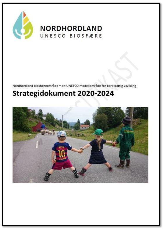 Forside strategi 2.JPG