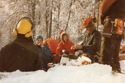 Dugnad i skogen på Eikås 1984 foto 3