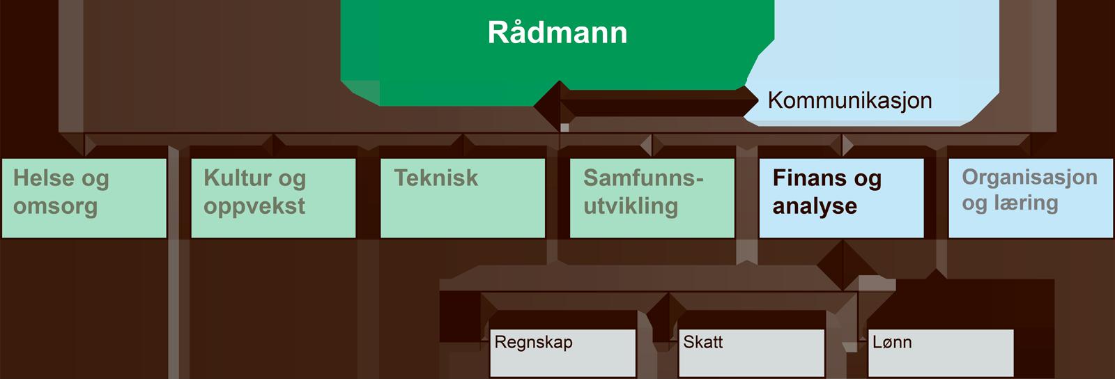 Organisasjonskart for finans og analyse