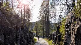 Turveien til Hellvik