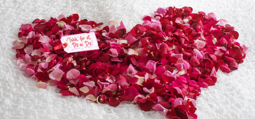 Toppbilde-Feire-bryllupsdagen-1