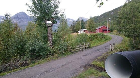 Vei til Mørsvikneset, foto Geir Anders Berg