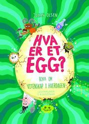 Hva er et egg