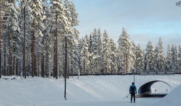 I området kring Ylläs och Levi i norra Finland kan man åka på natursnö på flera ställen nu. FOTO: Levi Ski Resort.