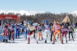 Lina Korsgren längst till vänster vid starten av Årefjällsloppet 2014. Nu ser Korsgren fram emot att åka Årefjällsloppets nya bana på 100 kilometer när loppet åter blir en del av Visma Ski Classics. FOTO: Visma Ski Classics/Magnus Östh.