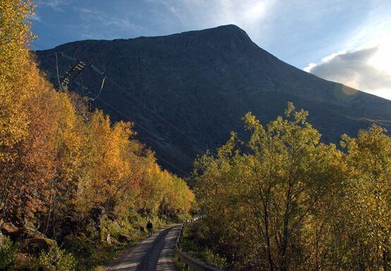 Anleggsvei opp til Lemmen