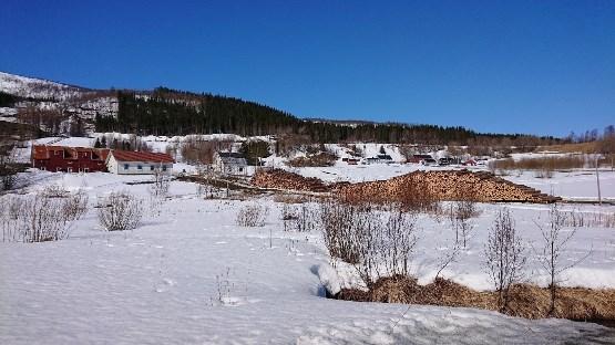 Tømmerdrift i Ånsvik, foto Gerd Bente Jakobsen