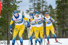 Stina Nilsson får chansen att göra världscupdebut som skidskytt vid kommande helgs världscupavslutning i Östersund. FOTO: Nicklas Olausson.