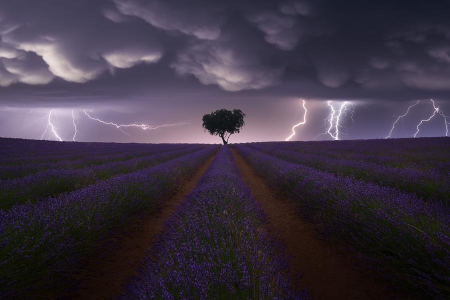 © Juan López Ruiz, Spain, Winner, Open competition, Landscape, Sony World Photography Awards 2021