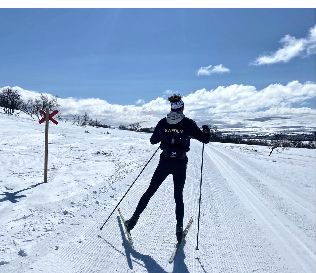 Det har blivit många timmar på skidorna de senaste veckorna för William Poromaa. Snart lägger han träningsplanen inför den kommande OS-vintern. FOTO: Privat.