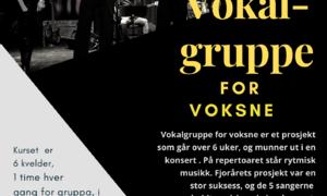 Vokalgruppe for voksne