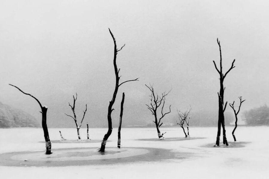 DK-DK-Landscapes-1327483_Henrik R