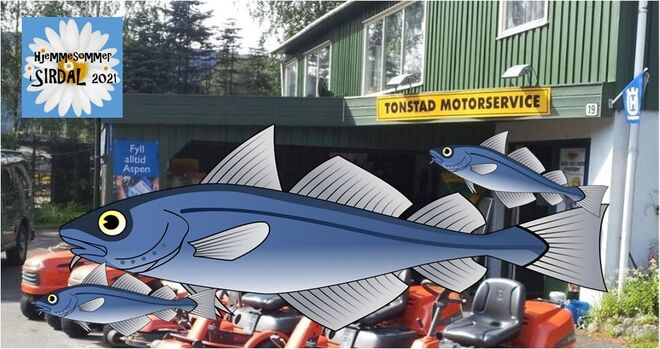 Ingressbilde Fiskekonkurranse Ted