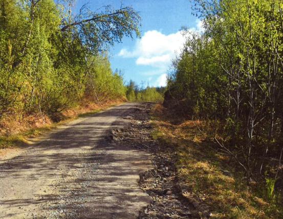 Høgdaveien-juni-21-ill