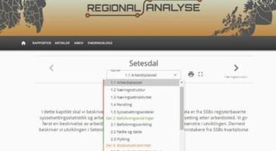 Regional analyse Setesdal 2021
