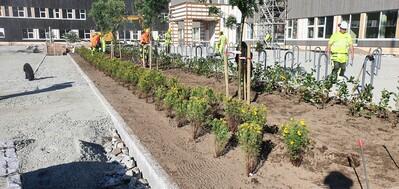 Beplantning uteområde 5-7_400x189.jpg