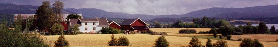 Bilde av Skjerven gård