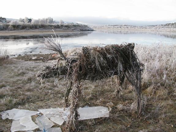 Karasjok, rein i tre, står på elvebredden, frost