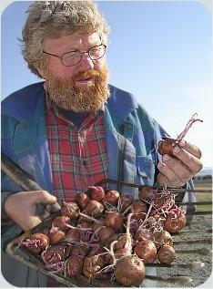 Petter studerer morpoteter med fine groer - før setting i mai