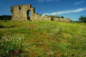 Kirkeruinen med blomstereng Foto: Helge Viken