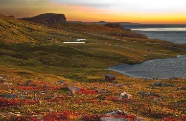 Høstdag på Kvithellan - Copyright Anne Olsen-Ryum