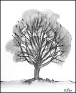 Bronsealderrøys Turter Tegning: Frances Dodman