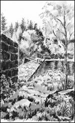 Øyungsdammen; Ann-Else Aalling